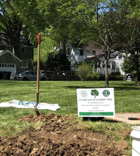 MPF Donates Tree for Arbor Day